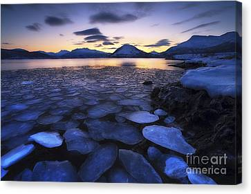 Ice Flakes Drifting Against The Sunset Canvas Print