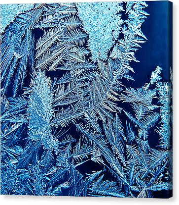 ice Canvas Print by HD Connelly