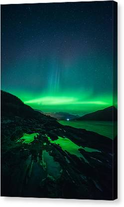 Ice Ice Baby Canvas Print by Tor-Ivar Naess