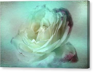 Ice Maiden Canvas Print