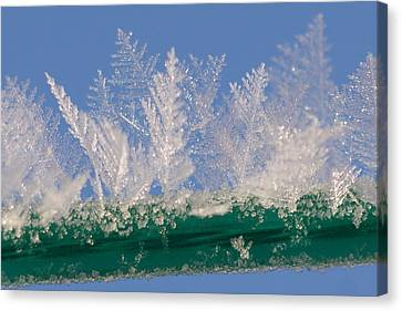 Ice On A Line Canvas Print