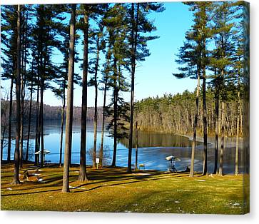 Ice On The Water Canvas Print by Donald C Morgan
