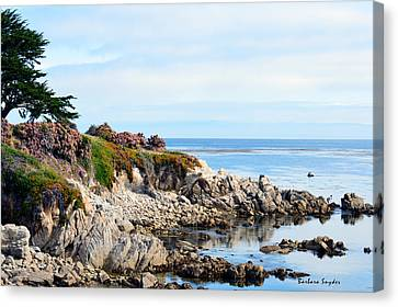 Ice Plant Along The Monterey Shore 2 Canvas Print by Barbara Snyder