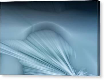 Ice Shelf Canvas Print