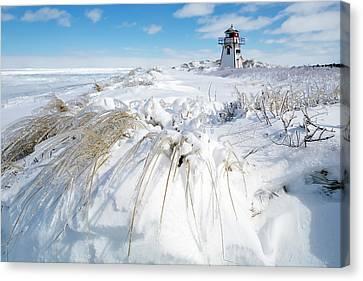 Ice Storm  Canvas Print by Stclair Macaulay
