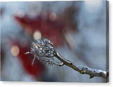 Ice Wand Canvas Print