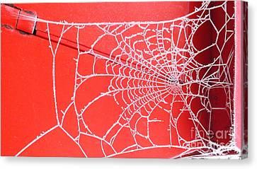 Ice Web Canvas Print
