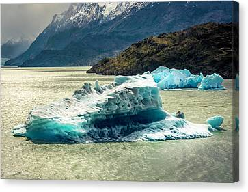 Iceberg Canvas Print by Andrew Matwijec