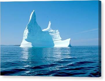 Iceberg Canvas Print by Douglas Pike