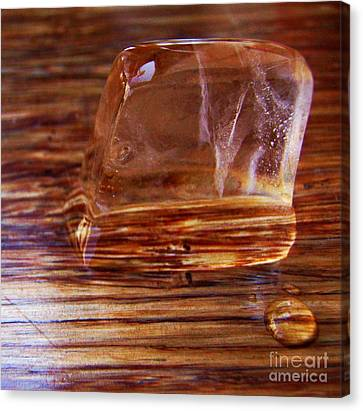 Canvas Print featuring the photograph Icecube Trail by Vanessa Palomino