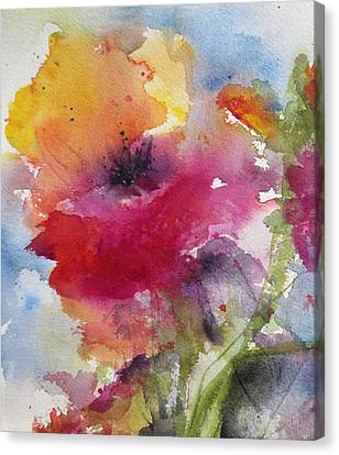 Iceland Poppy Canvas Print by Anne Duke