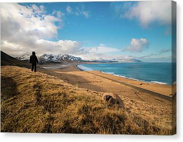 Iceland View Canvas Print by Larry Marshall
