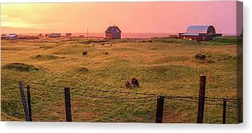 Canvas Print featuring the photograph Icelandic Farm During Sunset by Brad Scott