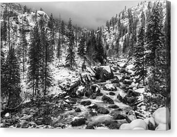 Icicle Creek Black And White Canvas Print by Mark Kiver