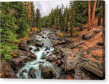 Icicle Gorge 2 Canvas Print