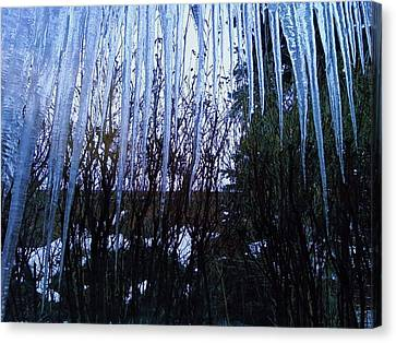 Icicles 1 Canvas Print