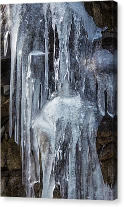 Icicles Canvas Print by Garry Gay