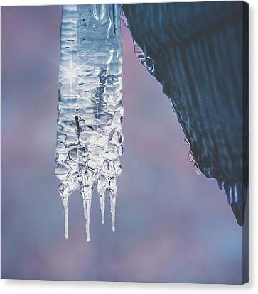 Canvas Print featuring the photograph Icy Beauty by Ari Salmela