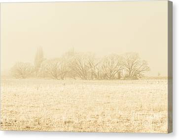 Melancholy Canvas Print - Icy Cold Foggy Woodland by Jorgo Photography - Wall Art Gallery