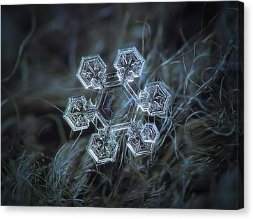 Canvas Print featuring the photograph Icy Jewel by Alexey Kljatov