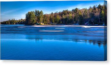 Icy Patterns On The Pond Canvas Print by David Patterson