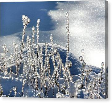Canvas Print featuring the photograph Icy World by Doris Potter