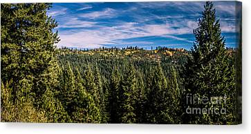 Idaho Backcountry Canvas Print