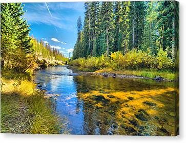 Idaho Stream 2 Canvas Print