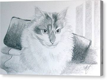 Idget Canvas Print by Joette Snyder