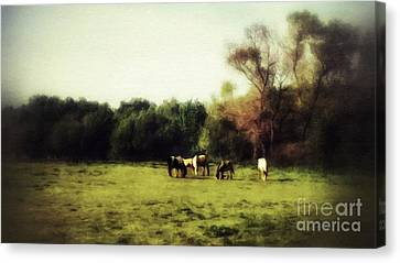 After The Day Is Done Canvas Print