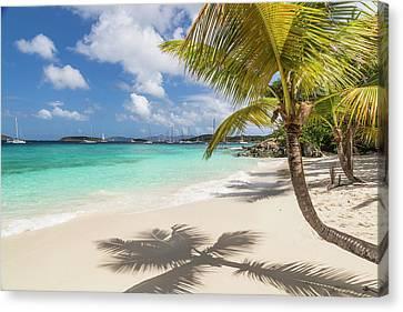 British Virgin Islands Canvas Print - Idyllic Salomon Beach by Adam Romanowicz