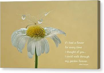 If I Had A Flower Quote Canvas Print by Barbara St Jean
