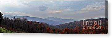 If I Were A Bird    Shenandoah Nation Park Canvas Print by Steven Lebron Langston