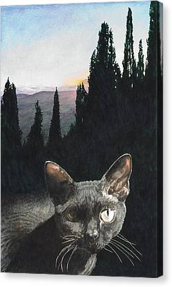 il Magnifico Canvas Print by Perry Woodfin