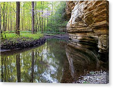 Illinois Canyon In Spring Canvas Print