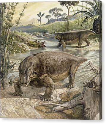 Illustration Of Lystrosaurus Canvas Print by John Sibbick