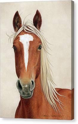 Wild Horses Canvas Print - Illya by Katherine Plumer