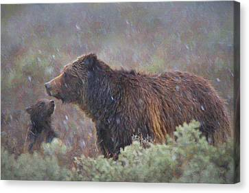I'm Cold Mom Canvas Print