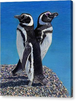 I'm Not Talking To You - Penguins Canvas Print by Patricia Barmatz