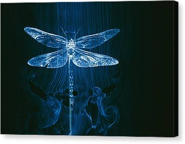 Imagery Of A Dragonfly In A Wind Tunnel Canvas Print