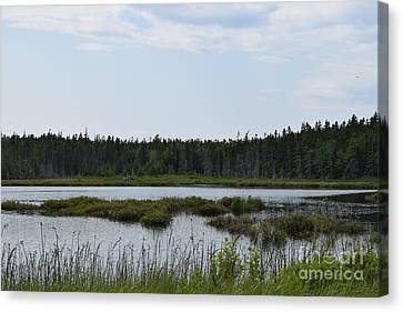 Images From Mt. Desert Island Maine 1 Canvas Print