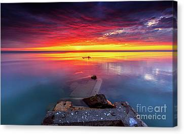 Imagination Is The Beginning Of Creation Canvas Print by Andrew Slater