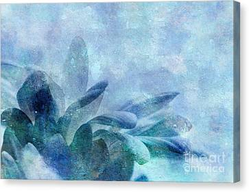 Immobility - 01at Canvas Print by Variance Collections