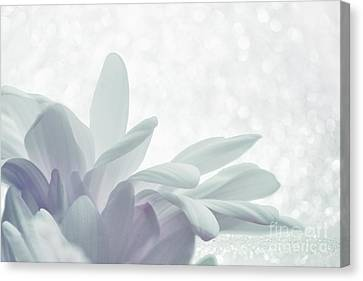 Flora Canvas Print - Immobility - W01c2t03 by Variance Collections