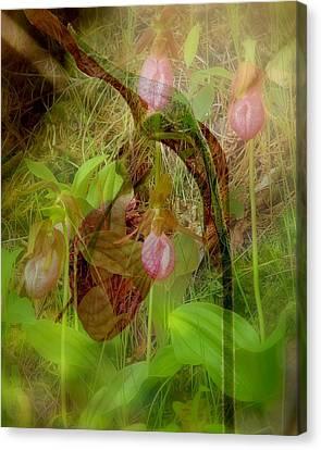 Imperiled Canvas Print by Priscilla Richardson