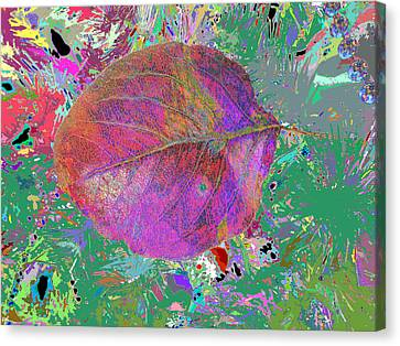 Imposition Of Leaf At The Season 4 Canvas Print by Kenneth James