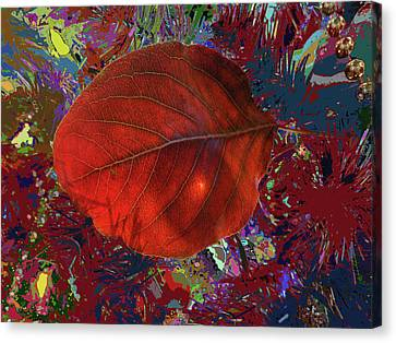 Imposition Of Leaf At The Season Canvas Print by Kenneth James