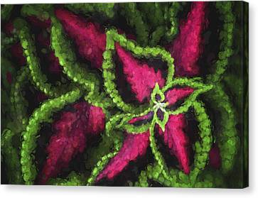 Impressionism - Coleus - Plant  Canvas Print by SharaLee Art