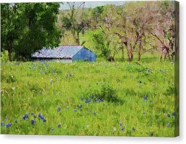 Canvas Print featuring the digital art Impressionist Bluebonnets And Barn by Ellen Barron O'Reilly