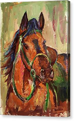 Impressionist Horse Canvas Print by Janet Garcia